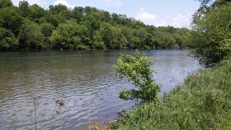 River in Radford
